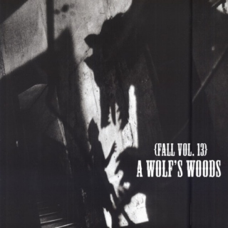 Fall, vol. 13 : A Wolf's Woods