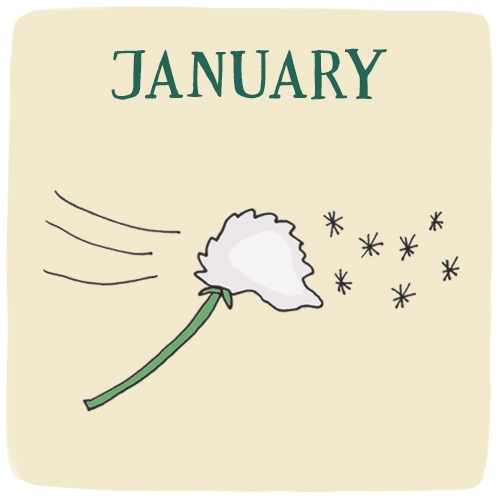January -- Your Soulful Wish
