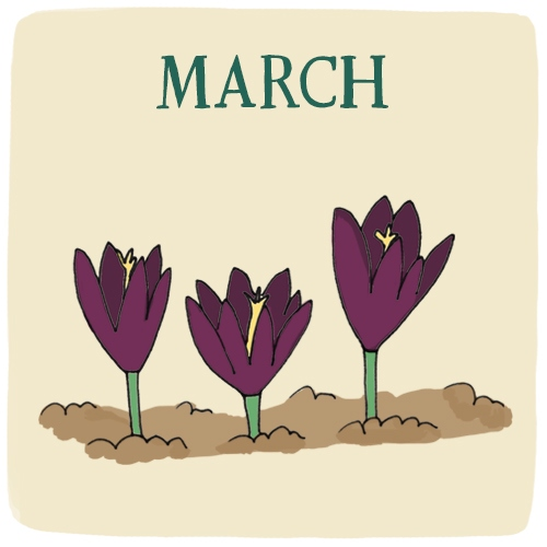 March -- Bloom Where You're Planted