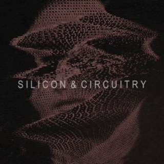 silicon and circuitry