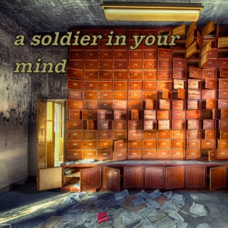 a soldier in your mind