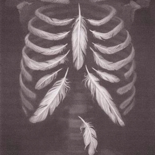 Feathers in our bones.