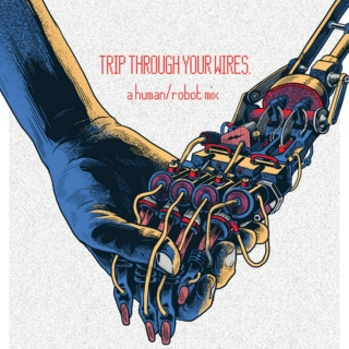 TRIP THROUGH YOUR WIRES.