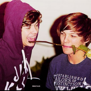 Larry Stylinson :)