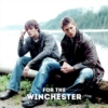 For the WINchester