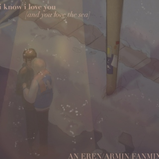 i know i love you [and you love the sea] // an eremin mix