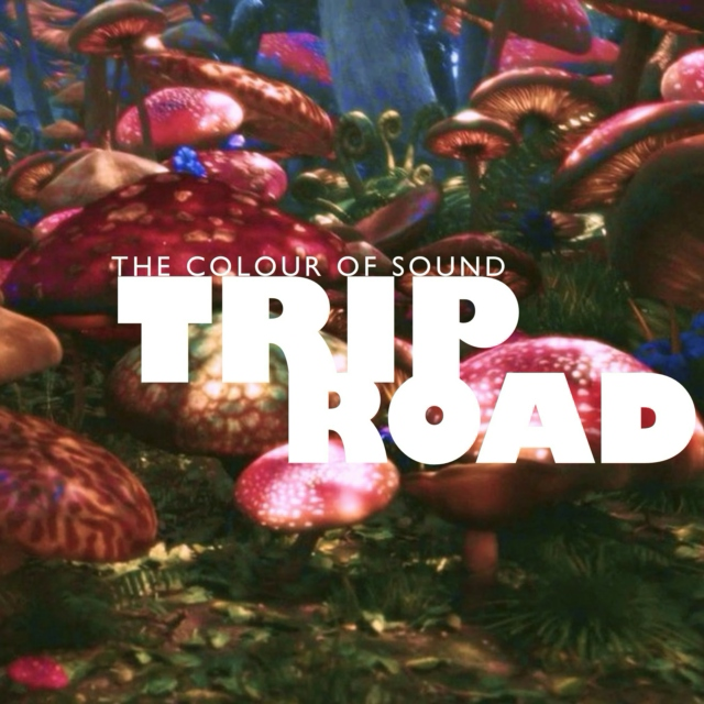 TRIP ROAD | the colour of sound
