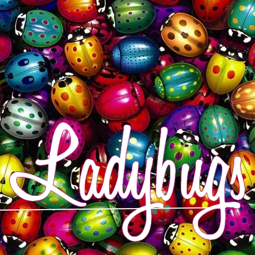 Ladybugs: A Female Tribute To The Beatles