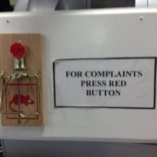 Not The Complaint Department