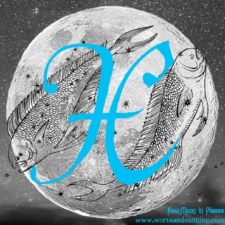 New Moon in ♓ Pisces ♓