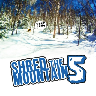 Shred the Mountains V