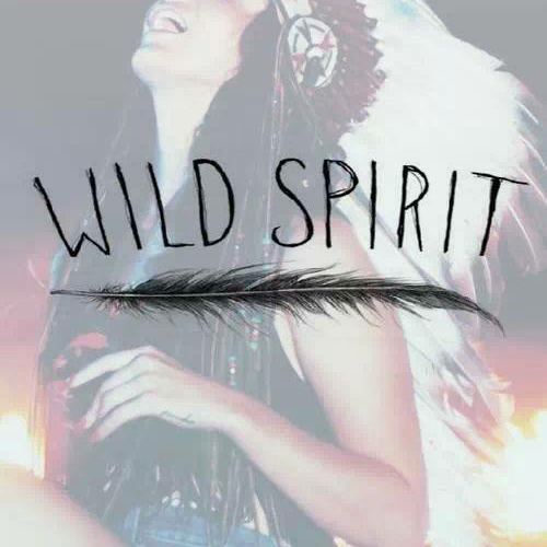 Wild Spirit (UPDATED 17/12/2014)