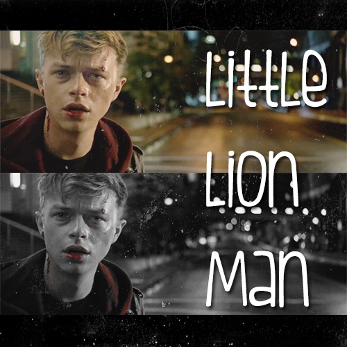 Little Lion Man