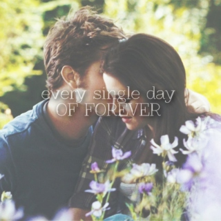 Every Day of Forever