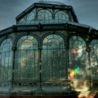 Dreams in the Glass House