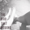 the bird that mourns