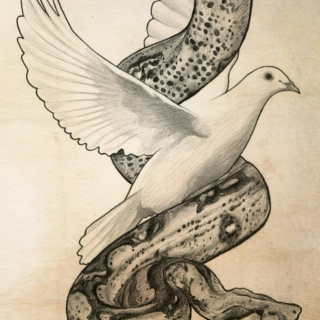 Wise Serpents + Doves