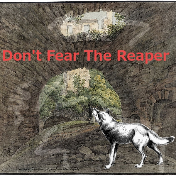 Don't Fear The Reaper