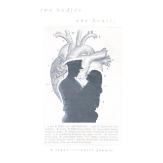 two bodies, one heart: a logan/veronica fanmix
