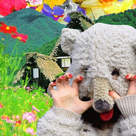 spring and bear came our town