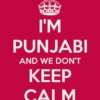 Everything Punjabi!