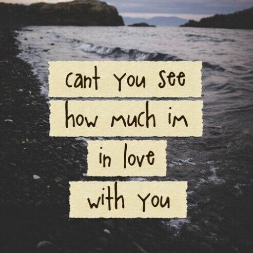 Can't you see? I love you, dammit