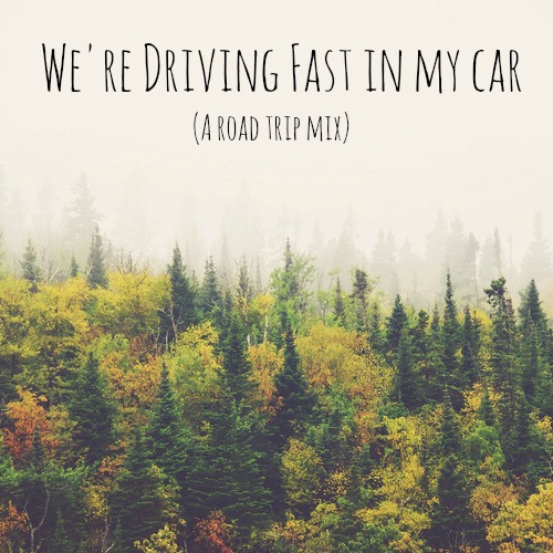 {we're driving fast in my car}