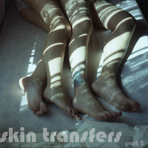 skin transfers p. two