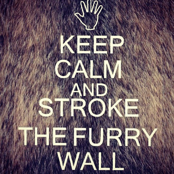 Just stroke the furry wall