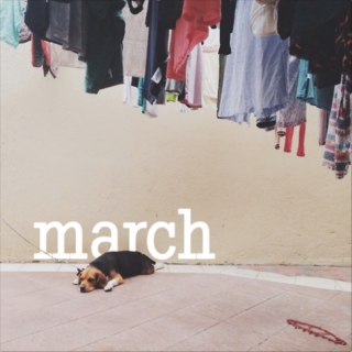 March: Dog days
