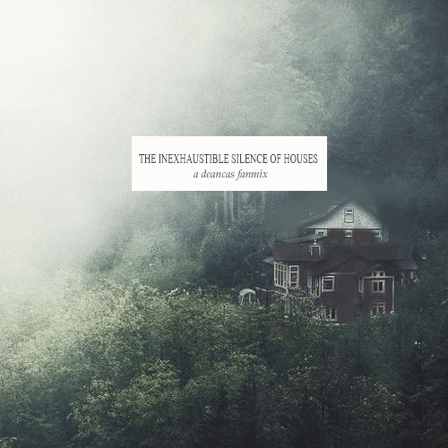 the inexhaustible silence of houses