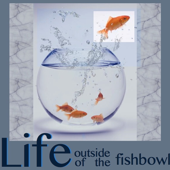 Life Outside of the Fishbowl