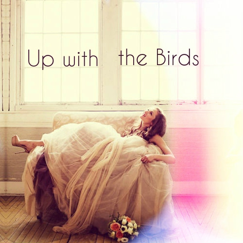 Up with the Birds