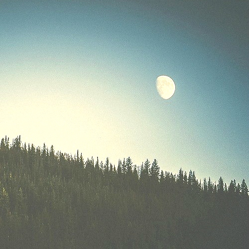 sometimes i miss the moon