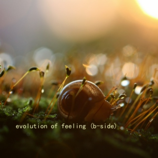 evolution of feeling (b-side)