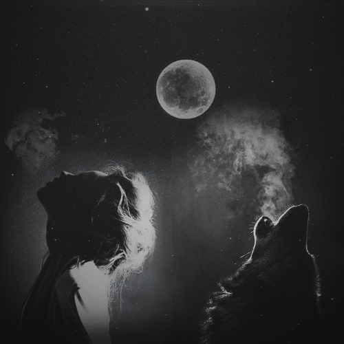 Wolf Me