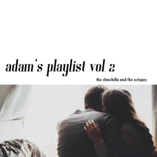 ADAM'S PLAYLIST VOL 2 / THE CHINCHILLA AND THE OCTOPUS