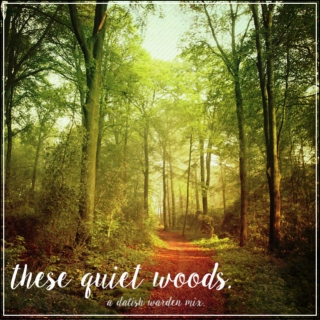 These Quiet Woods