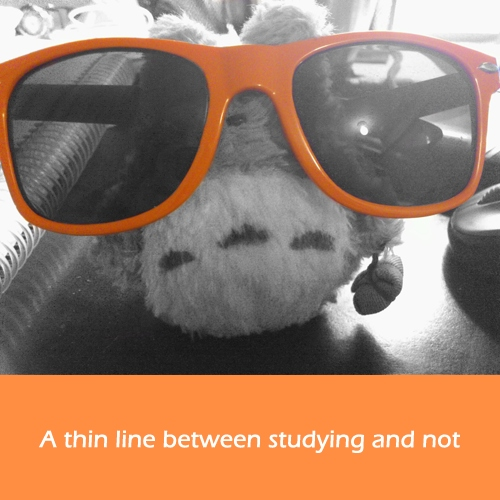 A thin line between studying and not