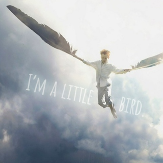 I'm a little bird.
