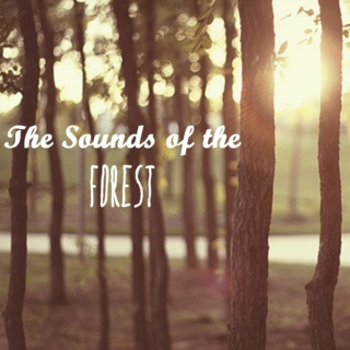 The Sounds of the Forest