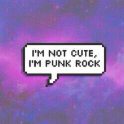 ✖ i do what i want, i'm punk rock ✖