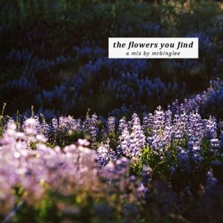 the flowers you find