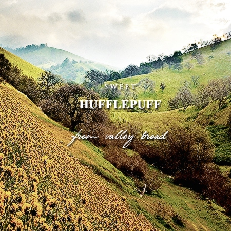 sweet hufflepuff, from valley broad