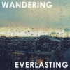 wandering in the everlasting way
