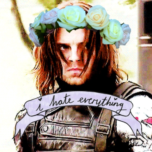 ♡ who the hell is bucky? ♡