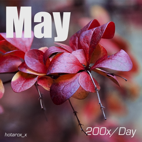 200x/Day (May '14)