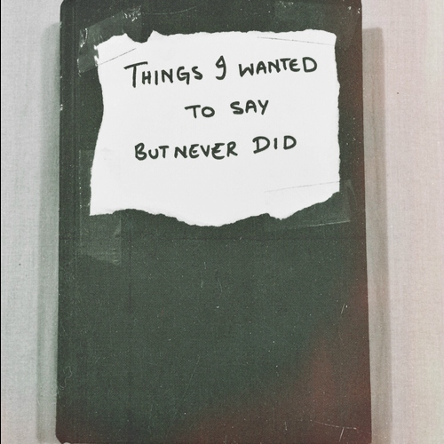 all the things i should've said