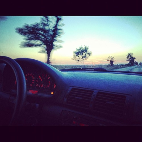 Car drives and happy times