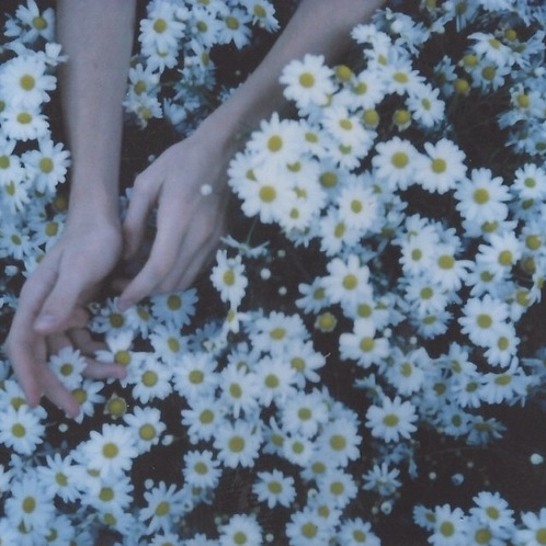 ❀it's all gonna break❀